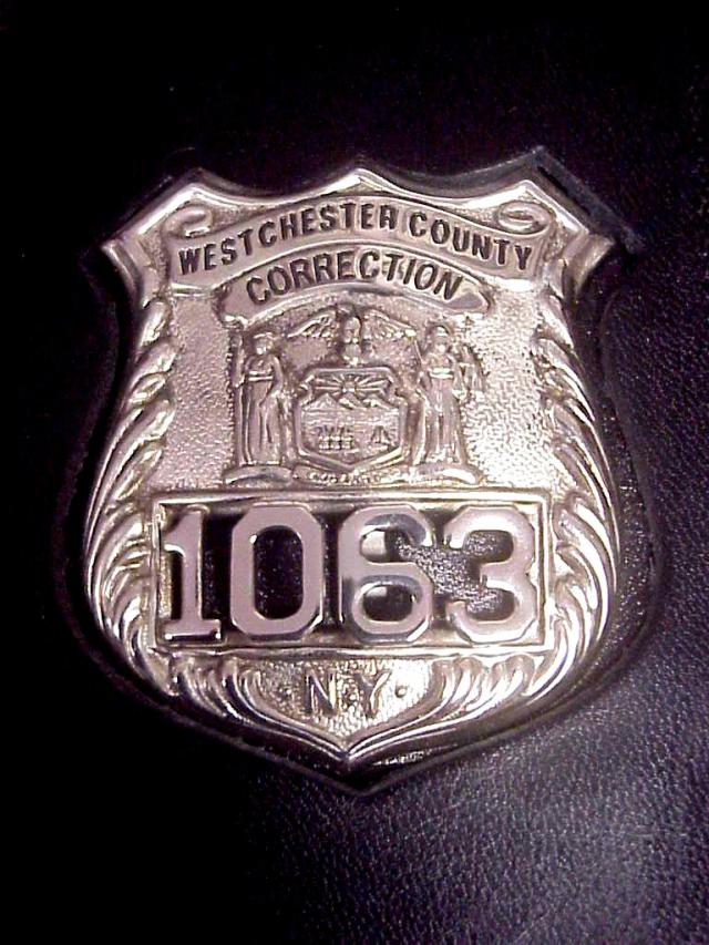 Collector S Badges Prison And Correction Badges